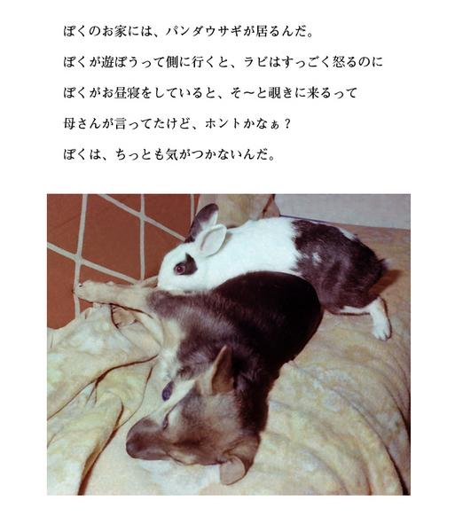 わんのきもち4.jpg