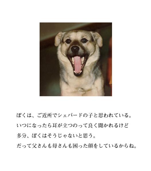 わんのきもち5.jpg