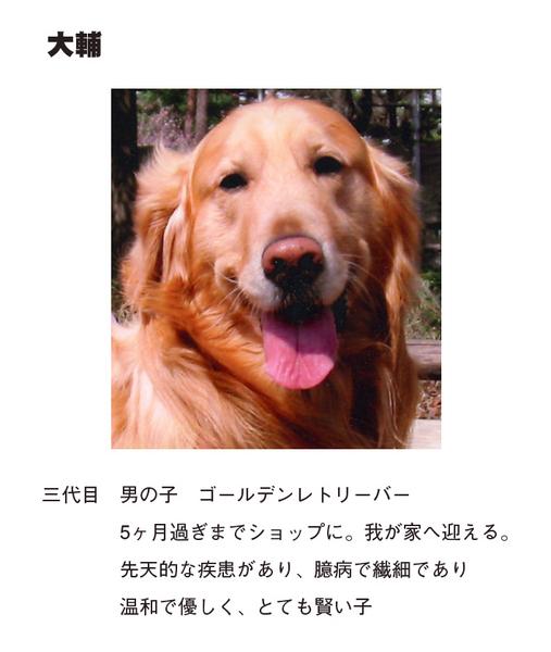 わんのきもち表紙-3.jpg