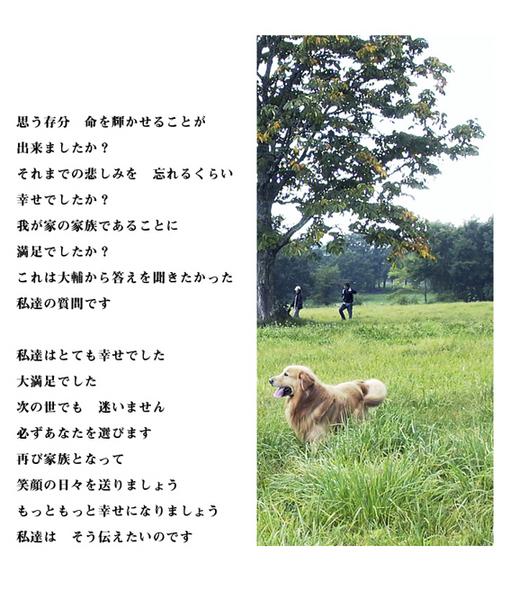 inochi-11.jpg