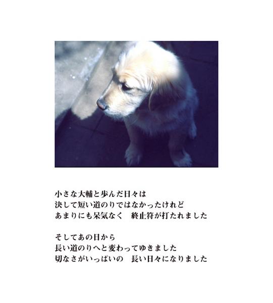 inochi-6.jpg