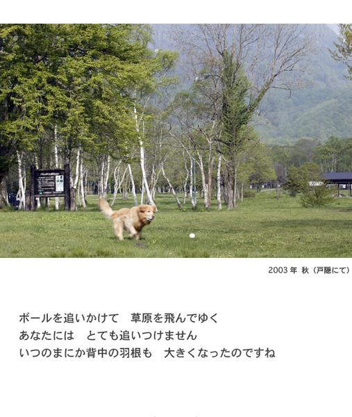 itoshikiomoi12-12.jpg