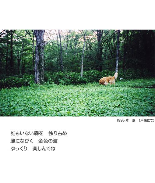 itoshikiomoi6-6.jpg