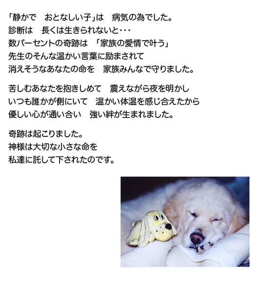 mataaeru-b2.jpg