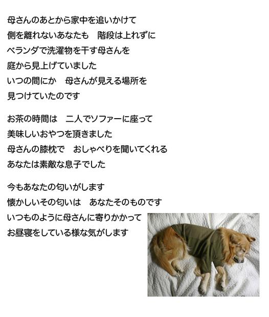 mataaeru12.jpg