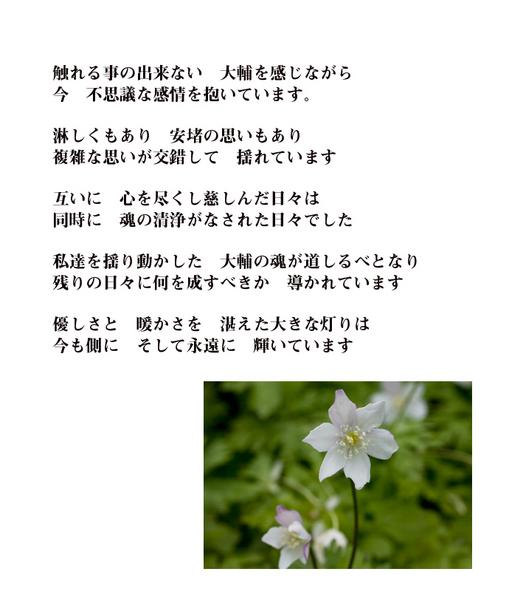 inochi-15.jpg