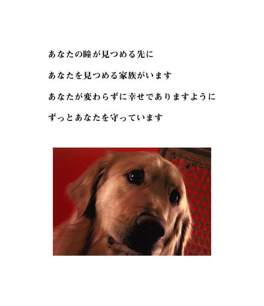 inochi-7.jpg