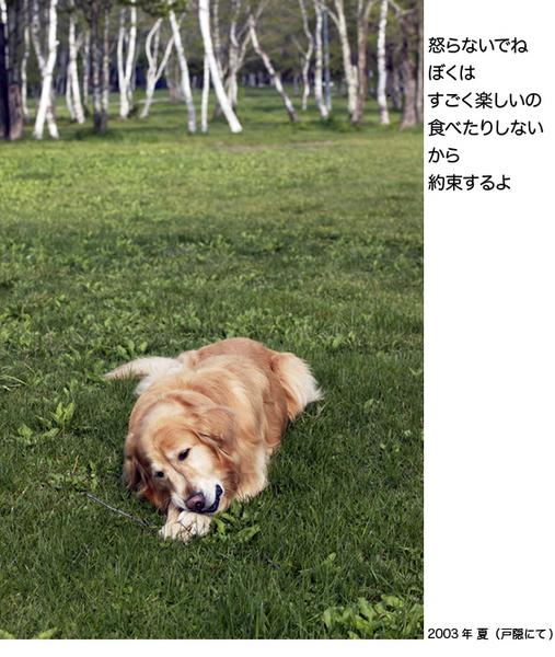itoshikiomoi13-13.jpg