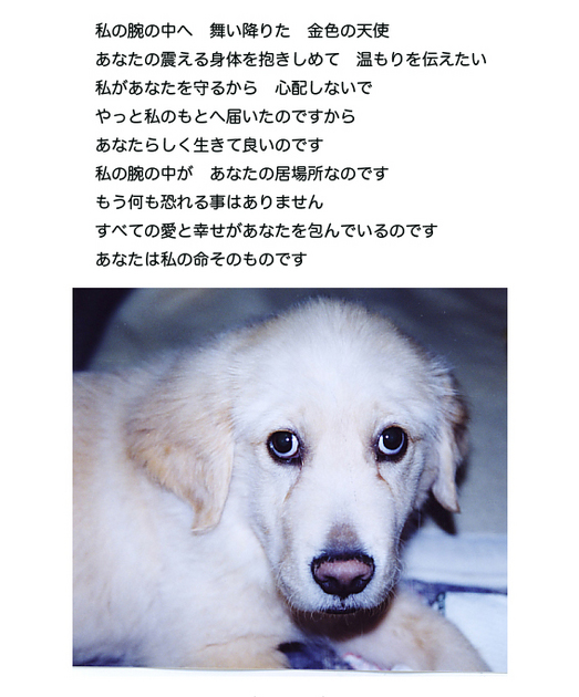 itoshikiomoi2-2.jpg